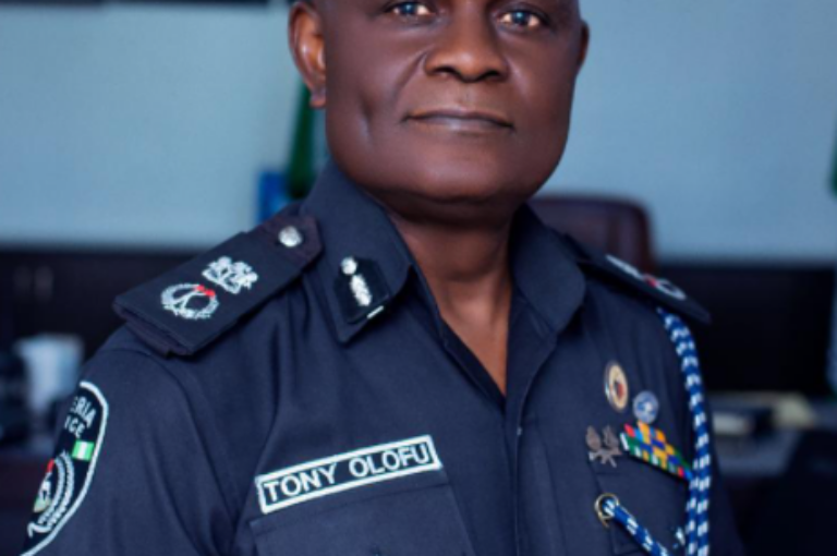 Commissioner of Police Anambra orders police personnel to confront killers